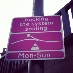 buckingthesystem