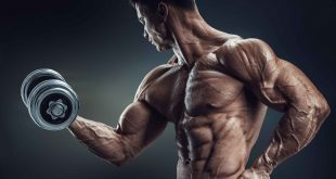 How to Get Big Biceps Fast
