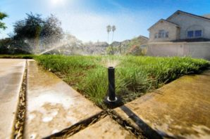 Effective Ways for Water Conservation at Outdoors
