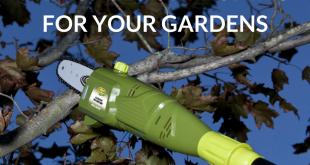 Principles of Pruning