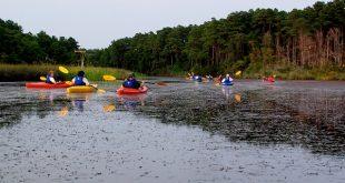 Kayaking Virgina