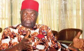 Dr. Nwodo: Ohanaeze needs idea and innovative Think-tank