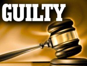 Why Amanda Knox and Raffaele Sollecito must be guilty