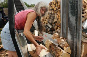 Buy Firewood Logs