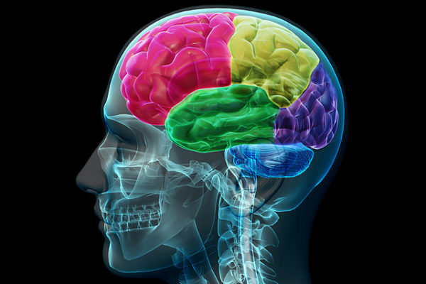Stroke treatment and Prevention-India
