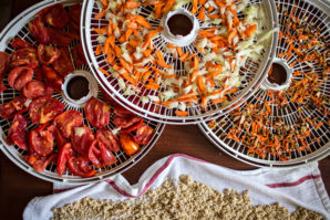 7 Great Tips to Dehydrate Food