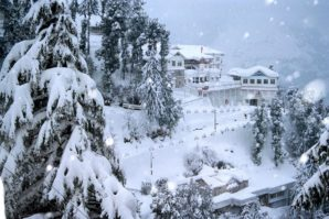 5 Mesmerizing places not to miss in your next Shimla trip