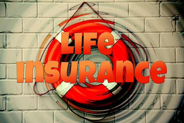 How to Decide Between Term and Whole Life Insurance Policies