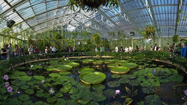 Good Botanical Gardens