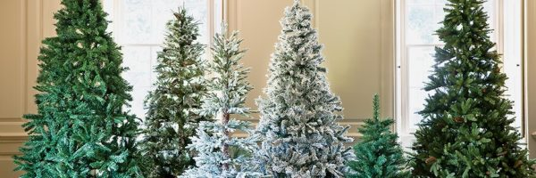 christmas-tree-buying-guide-teaser-image