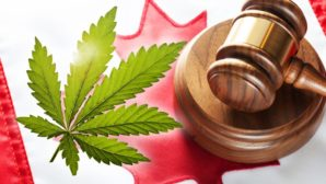 Canadian Marijuana Use & Legalization – What to Expect in 2017