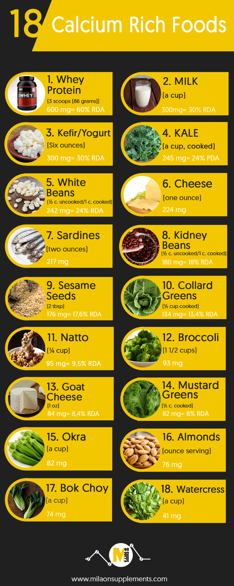 Best Calcium Rich Foods To Feed Snails