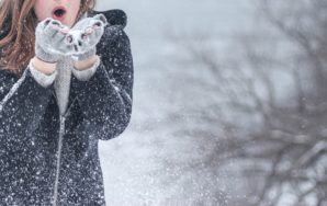 Five Reasons Families Move South for the Winter