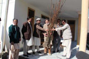 Plantation Drive kicked at Chitral