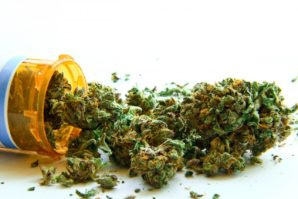 Legalization of Cannabis and the Health Advantages Associated with It