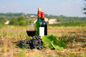 French for Beginners At The Wine Company Gurgaon