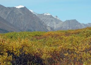 Hiking the Chilkoot Trail in Alaska