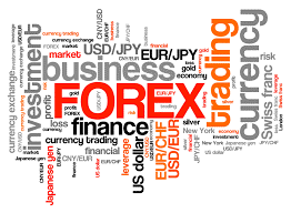 Forex USD: What You Need to Know