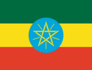 Ethiopia bans its citizens from seeking jobs in Lebanon.