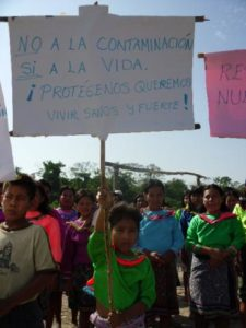 Peruvian Commission Confirms Oil Contamination by Maple Energy in the Amazon