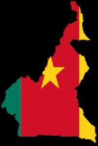 Cameroon: Essayist and Blogger Arrested and Charged with Robbery